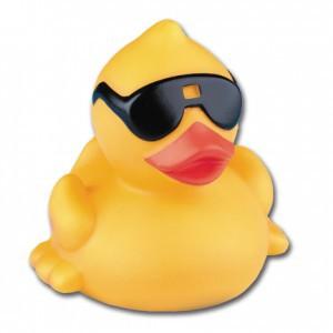 1000-derby-duck-lr1-300x300